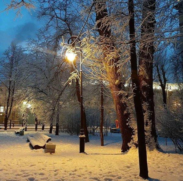 Фото снежного Петербурга делятся в соцсетях. Как мороз создал волшебные пейзажи природа, пейзаж
