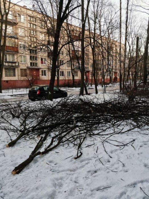 Почему чиновники Фрунзенского района под руководством Серова не занимаются благоустройством