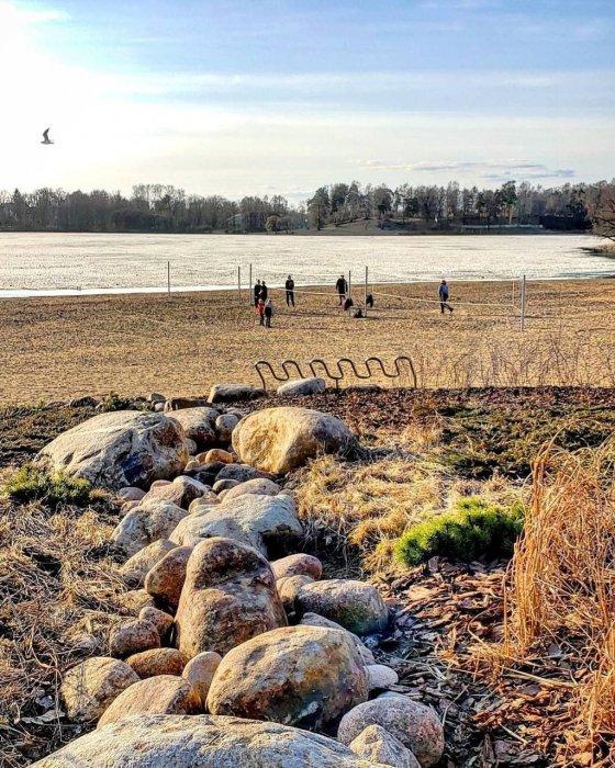 Для летних прогулок подойдёт новое пространство на Суздальских озёрах спб, лето, отдых