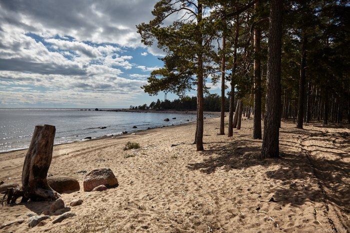 Депутаты Петербурга требуют защитить пляжи от застройки
